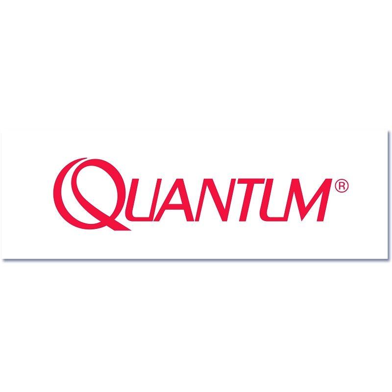 Quantum Bootsaufkleber